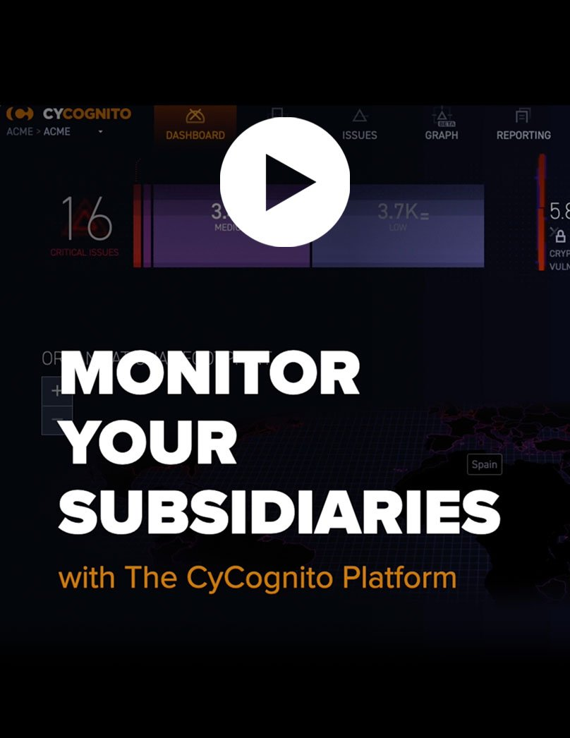 Video-Monitor-Your-Subsidiaries